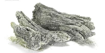 Europium metal dendrites, 99.8%